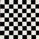 Vans Black and White Checkerboard Pattern